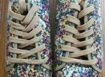 کفش نو استفاده نشده در شیپور-عکس کوچک