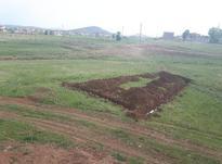 زمین صاحب کاربری دار در شیپور-عکس کوچک