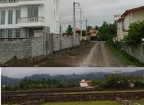 فروش زمین 227 متر در نور در شیپور-عکس کوچک