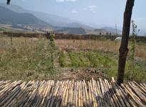 باغ اماده،فروش به قیمت زمین فقط در شیپور-عکس کوچک