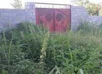 فروش زمین کشاورزی باغی1000متری دراطراف بلوار ولایت آمل در شیپور-عکس کوچک