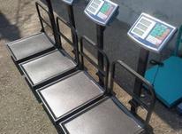 فروش ترازو دیجیتال 300 کیلویی گارددار تاشو در شیپور-عکس کوچک