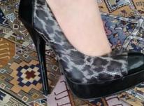 کفش سایز 38 در شیپور-عکس کوچک