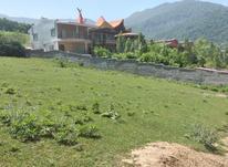 فروش زمین مسکونی 2000 متر در آمل در شیپور-عکس کوچک