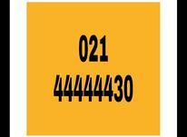 خط طلایی تلفن ثابت رند021.44444430 در شیپور-عکس کوچک