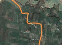 زمین کشاورزی موقعیت مناسب در شیپور-عکس کوچک