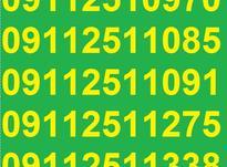 0911.251.11.09 در شیپور-عکس کوچک