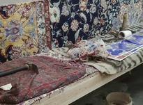 نیروی کار تولید فرش دستبافت در منزل در شیپور-عکس کوچک