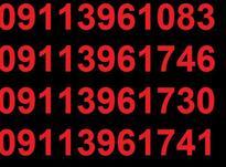 0911.396.22.65 در شیپور-عکس کوچک