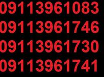 0911.396.17.41 در شیپور-عکس کوچک