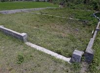 زمین مسکونی 310 متر در تنکابن در شیپور-عکس کوچک