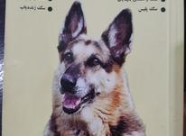 کتاب آموزش سگ ژرمن شپرد در شیپور-عکس کوچک