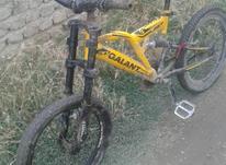 دوچرخه تمیز و سالم در شیپور-عکس کوچک