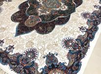 فرش دربار کاشان، ماشینی، کرم 6متری، در شیپور-عکس کوچک