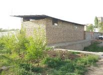 دامداری اجاره قدیم آباد 1000 متری در شیپور-عکس کوچک