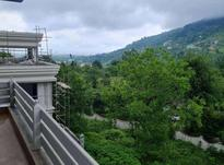 فروش ویلا 280 متری لوکس جنگلی رامسر در شیپور-عکس کوچک