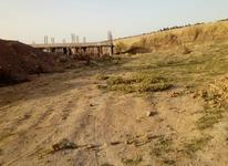 زمین 104 متری واقع در گالیکش شهرک بسیجیان در شیپور-عکس کوچک
