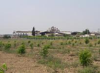 باغ جاده اصلی گرگان کردکوی در شموشک7000 متر در شیپور-عکس کوچک