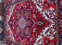 فرش شش متری هریس دستبافت تاجری در شیپور-عکس کوچک
