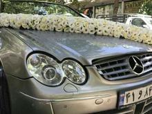 اجاره انواع خودروهای ایرانی وخارجی 2بیمه در شیپور