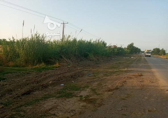 6000 متر زمین تفکیک شده در منطقه بهنمیر(کل زمین 15000 متر) در گروه خرید و فروش املاک در مازندران در شیپور-عکس1