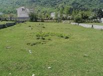 زمین داخل بافت مسکونی 651 متر در چالوس در شیپور-عکس کوچک