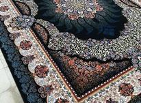 فرش دربار کاشان، سودا 12متری، سورمه ایی، کرم، فیلی، ماشینی در شیپور-عکس کوچک