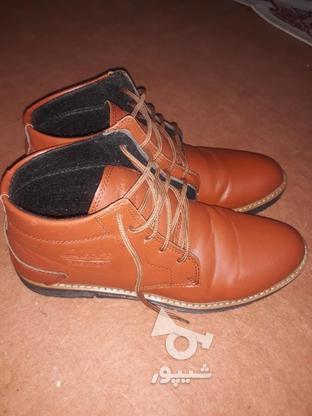 فروش کفش سالم در گروه خرید و فروش لوازم شخصی در البرز در شیپور-عکس2