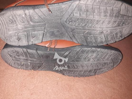 فروش کفش سالم در گروه خرید و فروش لوازم شخصی در البرز در شیپور-عکس3