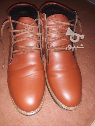 فروش کفش سالم در گروه خرید و فروش لوازم شخصی در البرز در شیپور-عکس1