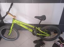 دوچرخه لاستیک پهن تریال در شیپور-عکس کوچک