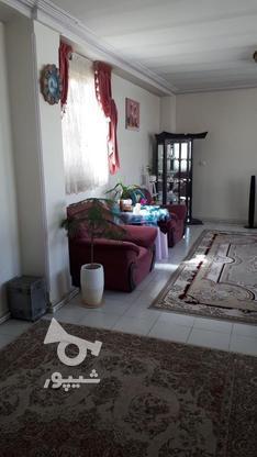 پُل(شعبه مرکزی)اصلانی88متر هفت تیر در گروه خرید و فروش املاک در البرز در شیپور-عکس5