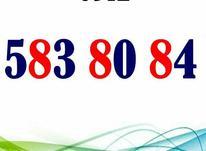 09125838084 در شیپور-عکس کوچک