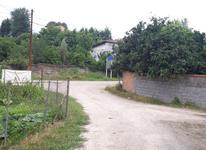 فروش زمین مسکونی 300 متر در قائم شهر روستای تلوک در شیپور-عکس کوچک