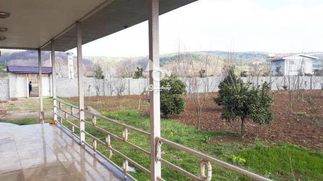خانه باغ 3000متری روستا زیبا ریکنده در گروه خرید و فروش املاک در مازندران در شیپور-عکس4