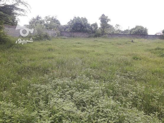 1500 متر، مسکونی، گیلان، اسالم در گروه خرید و فروش املاک در گیلان در شیپور-عکس1