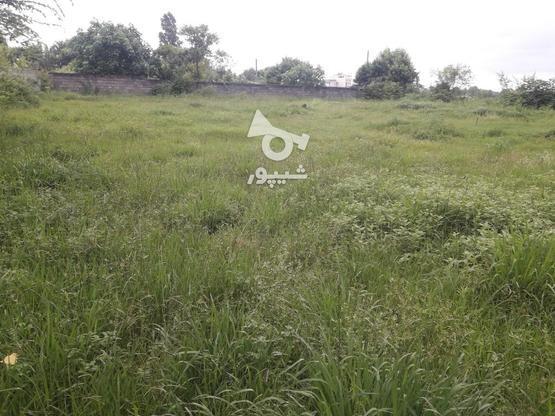 1500 متر، مسکونی، گیلان، اسالم در گروه خرید و فروش املاک در گیلان در شیپور-عکس2