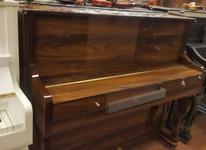 پیانو کاسیو px160 در شیپور-عکس کوچک