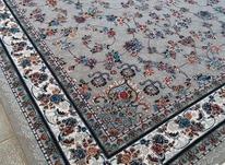 فرش دربار کاشان، گیلدا کرم، فیلی، سورمه ایی، 9متری طرح 700 در شیپور-عکس کوچک