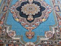 فرش دربار کاشان، باغ معلق 6متری، طرح 700 شانه، ماشینی در شیپور