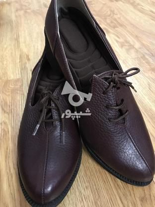 کیف و کفش چرم تبریر در گروه خرید و فروش لوازم شخصی در تهران در شیپور-عکس3