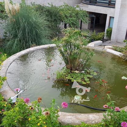 اجاره ویلا 220 متر در شهرک غرب در گروه خرید و فروش املاک در تهران در شیپور-عکس2