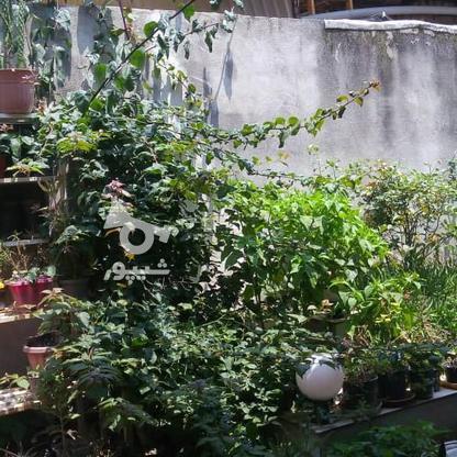 فروش و معاوضه ویلایی 160متری در کوچه سینا در گروه خرید و فروش املاک در مازندران در شیپور-عکس7