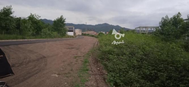 فروش ویژه زمین در گیلان با کاربری در گروه خرید و فروش املاک در گیلان در شیپور-عکس1