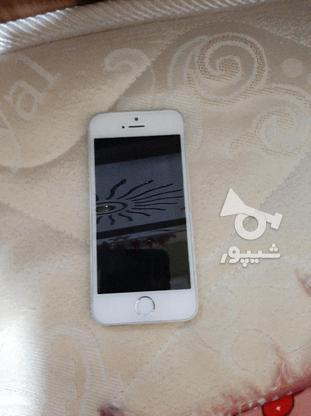 ایفون5s در حد در گروه خرید و فروش موبایل، تبلت و لوازم در مازندران در شیپور-عکس3