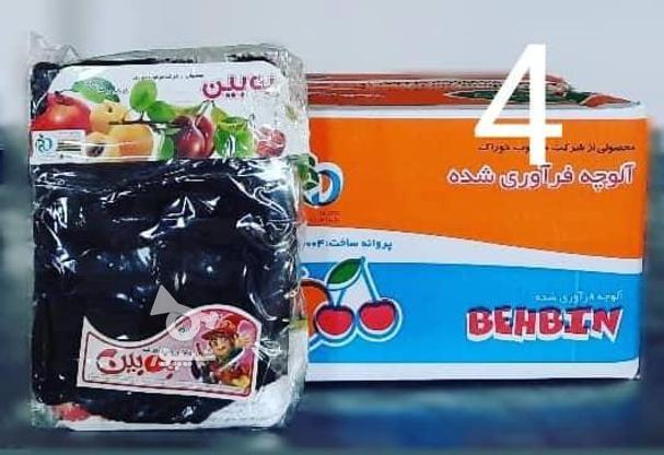 انواع لواشک و آلوچه شرکت مرغوب خوراک به بین در گروه خرید و فروش خدمات و کسب و کار در تهران در شیپور-عکس3