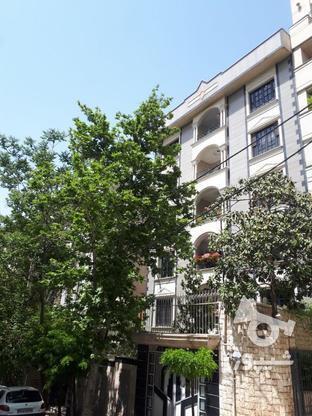 شریعتی 173 متر بی نقص در گروه خرید و فروش املاک در تهران در شیپور-عکس1