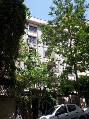 شریعتی 173 متر بی نقص در گروه خرید و فروش املاک در تهران در شیپور-عکس2