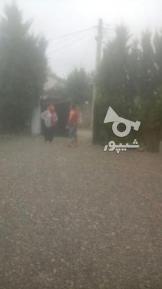 ویلا باسند واب.برق.گاز در گروه خرید و فروش املاک در مازندران در شیپور-عکس2