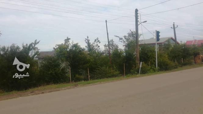 250مترزمین مسکونی بر جاده اصلی رودبارسرا در گروه خرید و فروش املاک در گیلان در شیپور-عکس4